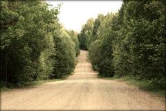 Проселочная дорога в древесине Стоковая Фотография