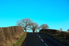 Проселочная дорога в зиме в Шотландии Стоковые Изображения RF