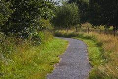 Проселочная дорога в летнем времени Стоковые Изображения