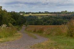 Проселочная дорога в летнем времени Стоковое Изображение RF