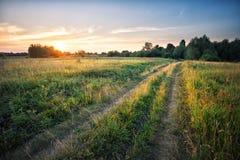 Проселочная дорога в поле с плотной травой на заходе солнца Стоковая Фотография