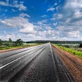 Проселочная дорога исчезая в расстояние. Панорама. Стоковое Фото