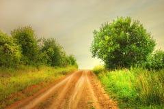 Проселочная дорога ландшафта лета Стоковое Изображение