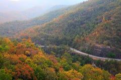 проселочная дорога на лесе цвета осени стоковая фотография