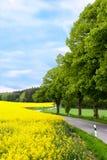 проселочная дорога Стоковые Фотографии RF