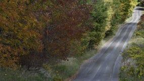 проселочная дорога Стоковая Фотография RF