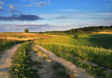 проселочная дорога стоковое изображение