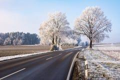 Проселочная дорога в ландшафте зимы с замороженными деревьями Стоковые Изображения
