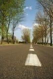 Проселочная дорога в Европе на лете/времени весны Стоковая Фотография RF
