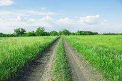 Проселочная дорога в деревне среди зеленых полей в фоне живописных облаков и голубого неба стоковая фотография