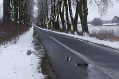 Проселочная дорога в зиме Стоковое Фото