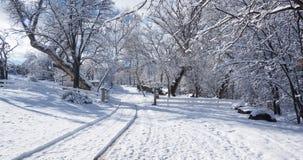 Проселочная дорога в зиме 01 Стоковая Фотография