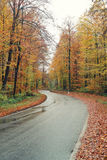 Проселочная дорога в осени Стоковые Фотографии RF