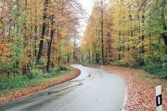 Проселочная дорога в осени Стоковые Изображения
