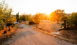Проселочная дорога на заходе солнца Стоковое фото RF