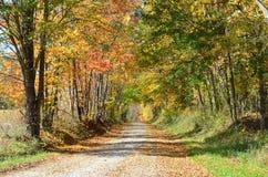 Проселочная дорога на солнечный день осени Стоковые Изображения