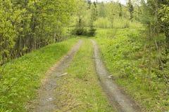 Проселочная дорога через лес Стоковая Фотография