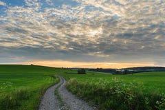 Проселочная дорога через зеленые поля Стоковые Изображения