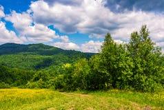 Проселочная дорога через сельские поля в ландшафте лета гор Стоковые Фотографии RF