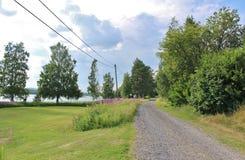 Проселочная дорога через симпатичный ландшафт лета стоковые изображения
