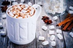 проскурняки шоколада горячие Стоковое фото RF