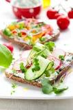 прослаивает wholemeal овощей стоковая фотография rf