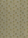 Просмотрите форзац старой книги, желт-сер-коричневый, с плотным и затейливым цветочным узором Стоковые Фотографии RF