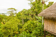 Простая амазонская хата Стоковые Фотографии RF