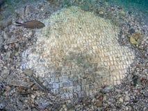 Простая мозаика в императоре Claudio's Ninfeum подводный, archeo стоковые изображения