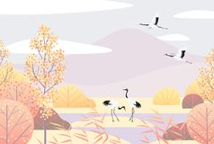 Простая осень Lanscape с Красно-увенчанными кранами Стоковые Изображения