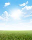 Простая трава и голубое небо Стоковое Изображение RF