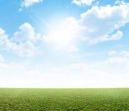 Простая трава и голубое небо Стоковые Фото