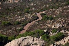 Простирание дороги на острове Caprera Стоковое Изображение RF