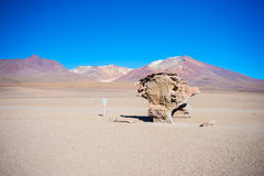 Простирание пустыни Sandy на боливийских Андах Стоковое Фото