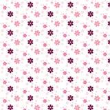 Простое розовое colorfulness картины цветка милое Стоковые Изображения