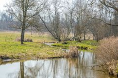 Простой ландшафт в предыдущей весне Деревья без листьев стоковая фотография rf