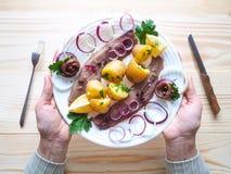 Простой обед страны с сельдями и икрой на плите Стоковое Изображение