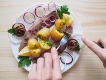 Простой обед страны с сельдями и икрой на плите Стоковые Изображения RF