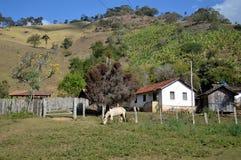 Простой дом стоковое фото