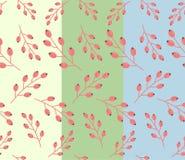 Простой цветочный узор осени: плодоовощ барбариса Стоковые Фото