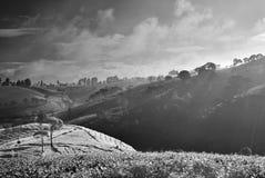 Простой Monochrome ландшафт Стоковые Изображения