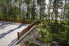 Просторная терраса деревянного дома в лесе с большим ветром Стоковые Фотографии RF