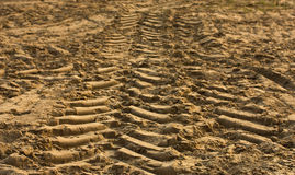 Проступи автомобилей на песке Стоковое Изображение RF