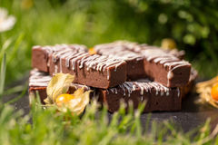 Простые блоки/бары шоколада Стоковая Фотография RF