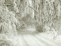 Простые снежные следы покрышки - портрет Стоковое Изображение