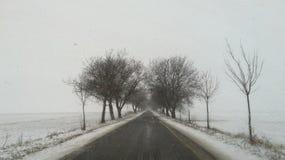 Простые снежные следы покрышки - портрет стоковое фото rf