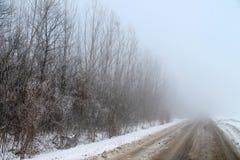 Простые снежные следы покрышки - портрет Стоковые Фото