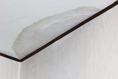 Протекая потолок Стоковые Изображения RF