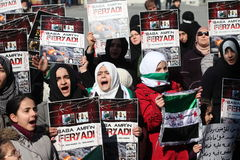протест Швеция стоковое изображение rf