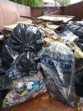 Противозаконный сбрасывать, погань в мусорном контейнере собранном во время уборки реки Стоковое Изображение RF
